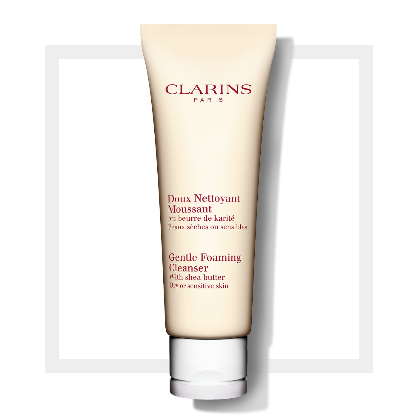 Gentle Foaming Cleanser (Dry or Sensitive Skin)