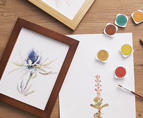 草本花藝水彩繪